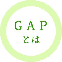 K-GAPとは?