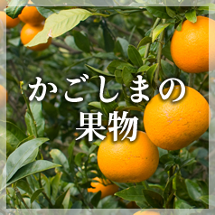 かごしまの果物