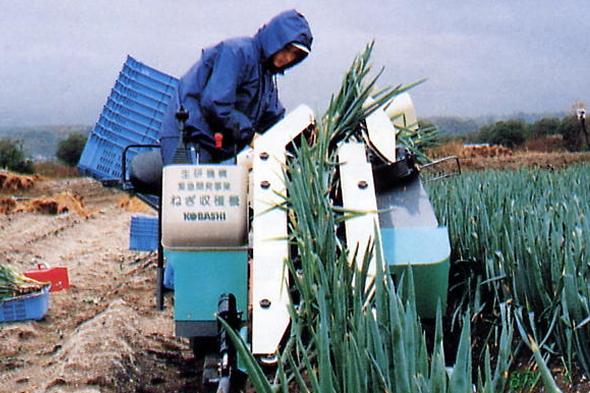ねぎ収穫機
