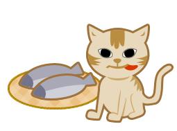 魚ん番に猫