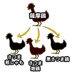 みんな大好きな「鹿児島の地鶏」について
