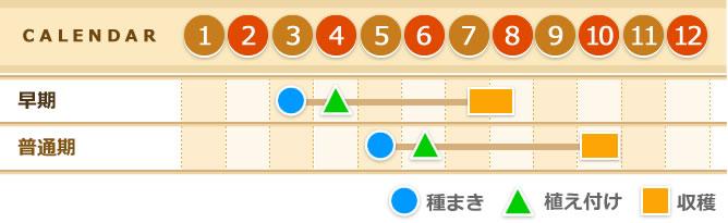水稲カレンダー
